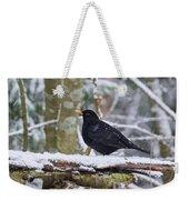 Eurasian Blackbird In The Snow Weekender Tote Bag