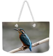 Eurasian Kingfisher Weekender Tote Bag