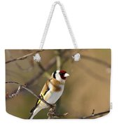 European Goldfinch 2 Weekender Tote Bag