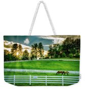 Evening Graze In Tennessee Weekender Tote Bag