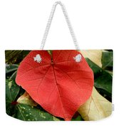 Evening Hau Tree Leaves Weekender Tote Bag