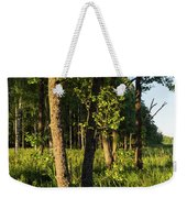 Evening In The Sunshine Weekender Tote Bag