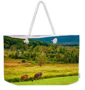 Evening In The Valley 2  Weekender Tote Bag