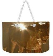 Evening's Light Weekender Tote Bag