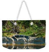 Everglades Crocodile Weekender Tote Bag