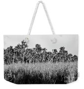 Everglades Grasses And Palm Trees 2 Weekender Tote Bag