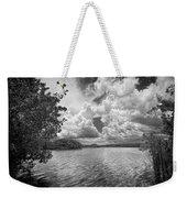 Everglades Lake - 0278abw Weekender Tote Bag
