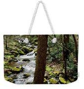 Evergreen Stream Ravine Weekender Tote Bag