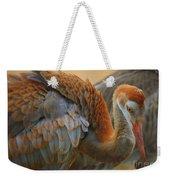 Evolving Sandhill Crane Beauty Weekender Tote Bag