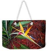 Exotic Bird Of Paradise Weekender Tote Bag