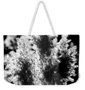 Exploded Cat Tails Weekender Tote Bag
