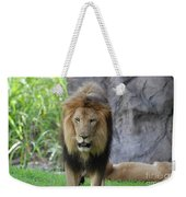Expressive Male Lion Prowling Around In Nature Weekender Tote Bag