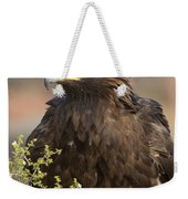 Eye Of The Golden Eagle Weekender Tote Bag