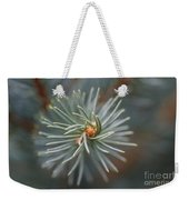 Eye Of The Pine Weekender Tote Bag