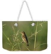 Eye On The Sparrow Weekender Tote Bag