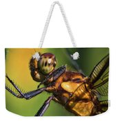 Eye To Eye Dragonfly Weekender Tote Bag