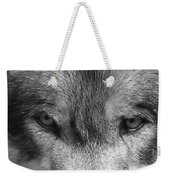 Eyes Of The Wild Weekender Tote Bag