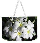 F13-plumeria Flowers Weekender Tote Bag