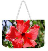 F20 Red Hibiscus Weekender Tote Bag