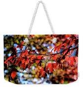 Fabulous Fall Weekender Tote Bag