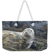 Face Of A Gray Seal Weekender Tote Bag