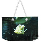 Face Of A Horned Boxfish Swimming Underwater Weekender Tote Bag