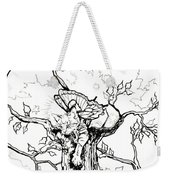 Fairy Cat Climber Weekender Tote Bag