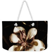 Fairy Iris. A Butterfly Landed On My Weekender Tote Bag