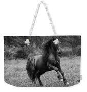 Fairy Tale Stallion Leaps Weekender Tote Bag