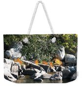 Fall At The Creek Weekender Tote Bag