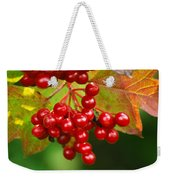 Fall Berries 2 Weekender Tote Bag