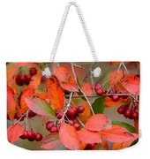 Fall Color 1 Weekender Tote Bag