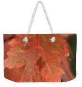 Fall Color In Softness Weekender Tote Bag