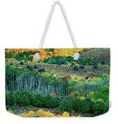 Fall Color In The Eastern Sierras California Weekender Tote Bag