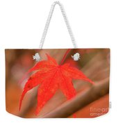 Fall Color Maple Leaves At The Forest In Kamakura, Kanagawa, Jap Weekender Tote Bag