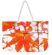Fall Color Maple Leaves At The Forest In Kumamoto, Japan Weekender Tote Bag