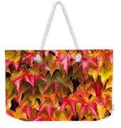 Fall Colored Ivy Weekender Tote Bag