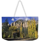 Fall Colors And Red Rocks Near Cave Weekender Tote Bag