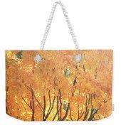 Fall Colors At Cape May Weekender Tote Bag