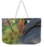 Fall Colors Peek Around Mountain Vertical Weekender Tote Bag