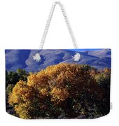 Fall Foliage And Hills, Carson City Weekender Tote Bag