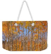 Fall Foliage Color Vertical Image Weekender Tote Bag