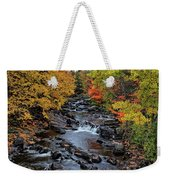 Fall Foliage In Dickinson, Ny Weekender Tote Bag