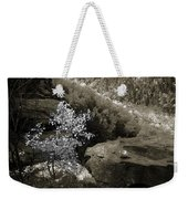 Fall Foliage Weekender Tote Bag