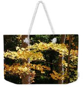 Fall Forest 1 Weekender Tote Bag