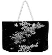 Fall Illumination In B/w Weekender Tote Bag