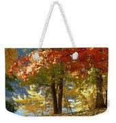 Fall In Kaloya Park 4 Weekender Tote Bag