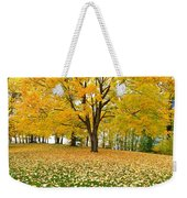 Fall In Kaloya Park 7 Weekender Tote Bag