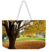Fall In Kaloya Park 8 Weekender Tote Bag