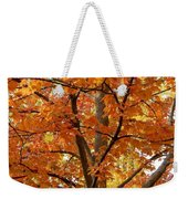Fall In Kayloya Park 2 Weekender Tote Bag